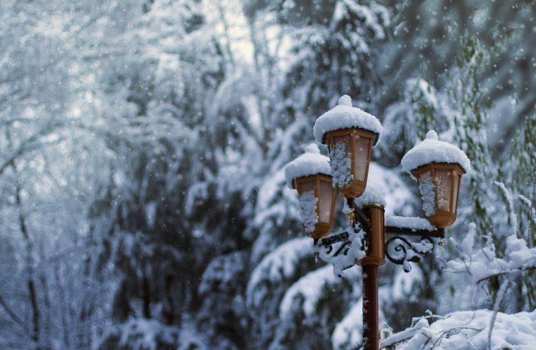"""""""Nicio iarnă nu durează o veșnicie; nicio primăvară nu își va neglija rândul."""" Harold Borland"""