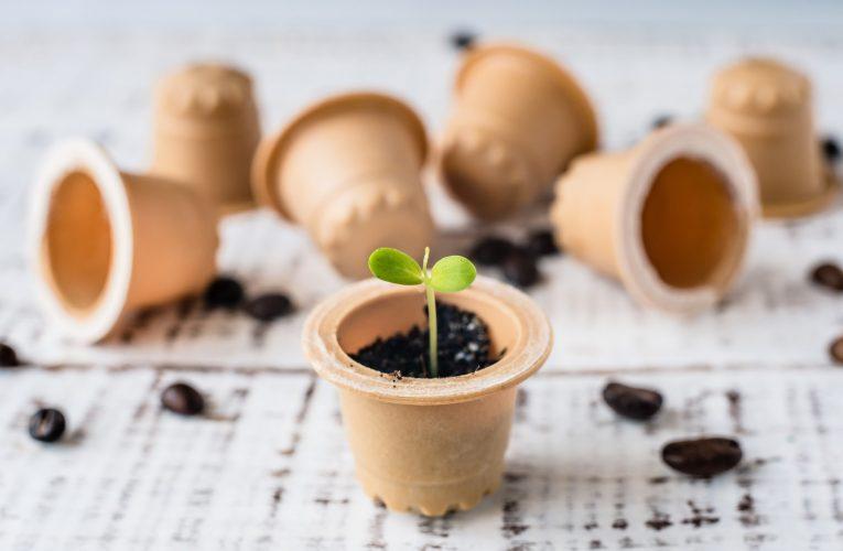 Au apărut capsulele de cafea biodegradabile