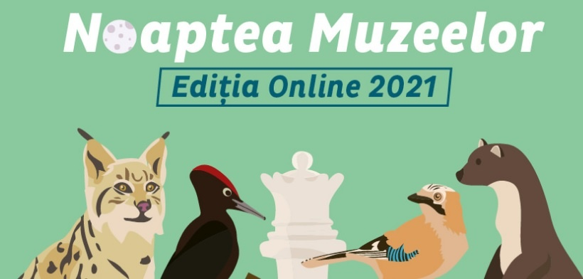 Noaptea muzeelor la Antipa